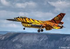 AIR FORCE BELGIAN. F-16 (31 TIGER SQUADRON). (Rodrigo Tran Corts) Tags: airport tiger zaragoza f16 aeropuerto nato caza garrapinillos ntm16 airforcebelgian autoremovedfrom10to25faves