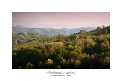 Postcard from Monferrato - Italy (GP Camera) Tags: flowers trees light sky italy primavera nature alberi landscape spring lightandshadows italia quiet shadows view postcard horizon natura calm ombre hills textures piemonte vineyards silence cielo frame fiori vignetting veduta calma luce paesaggio cartolina lighteffects colline cornice lateafternoon orizzonte silenzio monferrato lucieombre quiete allaperto vigneti trame springnature tardopomeriggio nikond80 effettidiluce nikonafsdx55200mmf456gvr naturainprimavera