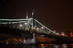 Liberty Bridge @ Night [Budapest - 6 December 2015] (Doc. Ing.) Tags: bridge cruise metal night river iron hungary steel budapest bynight nighttime hu danube 2015 libertybridge centralhungary