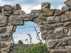 Ruine (Chris 07110) Tags: ruine pierres murs