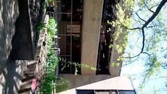Courtyard (Western Cuyahoga Audubon) Tags: youth conservation habitat beautification mentoring volunteerism environmentalconservation birdfriendly schoolprograms collaborativeleadership clevelandmunicipalschools waltonschool westerncuyahogaaudubon