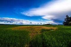 DSC07132 (fidel_barto) Tags: clouds germany landscape deutschland outdoor sony balticsea landschaft ostsee usedom sonyalphaslta58