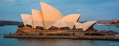 2016 - Sydney - Sun going down