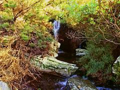 Secret swimming hole (angeloska) Tags: nature water spring secret ikaria aegean ridge greece swimminghole nymphs mountainstream  nudebathing  atheras wildswimming  opsikarias