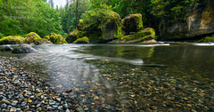 Be Water. (Brendinni) Tags: trees friends green water creek river landscape moving moss rocks transformation spray erosion wa flowing magical bushes brucelee bewater washingtonexplored
