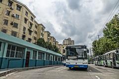 Shanghai Bus  (Bridge Line 5) B42596 S0H-068 SWB6106HG MT (AC02 Works) Tags: china bus volvo shanghai cloudy terminal   pudong     b7r   sunwin b6r  shanghaibus  swb6106hg swb6100v5  s0h068