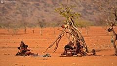 15-09-12 Ruta Okavango Namibia (285) R01 (Nikobo3) Tags: travel people paisajes naturaleza color fauna rural portraits nikon sitting ngc social folklore retratos viajes sit seated namibia gentes culturas d800 twop artstyle epupa frica kunene wonderfulworld tribus etnias himbas omot nikond800 okongwati natgeofacesoftheworld nikon7020028vrii nikobo josgarcacobo todosloscomentarios