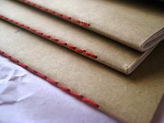 ROTERFADEN fills (anoat1970) Tags: notebook