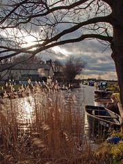 West Somerton (Gerry Balding) Tags: england water boats norfolk reads eastanglia staithe norfolkbroads westsomerton thebestofday gnneniyisi