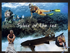 Sylvie of the sea (Cruising, traveling & dive pics.) Tags: cd montage layers 2011 2011nthcrus