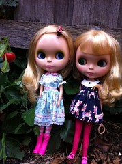 Pearl & Pollen