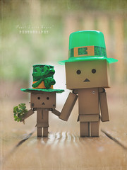 'If you are lucky enough to be Irish, You are lucky enough' (.OhSoBoHo) Tags: ireland irish cute green rain canon toy 50mm sweet luck kawaii celtic shamrock 2012 odc mythsandlegends paddysday danbo proudtobeirish lfhilepdraig canoneos40d danboard  iregobrch robto danbolove ourdailychallenge danbosaintpatricksday leprechaundanbo onedollarstorehats cloverfromthegarden