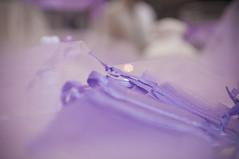 Wedding Details (rupertalbe - rupertalbegraphic) Tags: wedding details alberto dettagli matrimonio giardino mariani melegnano sgaetano rupertalbe rupertalbegraphic