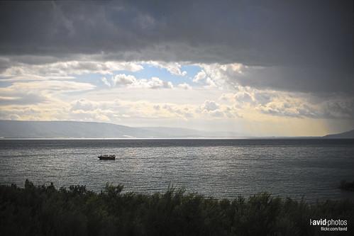 Golan on 2012-03-25 - DSC_7828.jpg