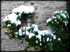 GREEN WINDOW (Loris_l@_r@na) Tags: winter snow verde green window canon finestra neve 1001nights inverno valmarecchia casteldelci uguccione 1001nightsmagiccity lorisphoto