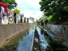 "(Sydney Rat Race"") Tags: graffiti sydney canals drain"