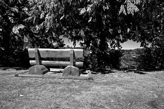 SEAT WITH A VIEW (2) (DESPITE STRAIGHT LINES) Tags: park trees canada tree woods woodlands nikon bc britishcolumbia vancouverisland sidney saanich nikon24120mmvr d700 nikond700 lillianhoffarpark lillianhoffar ilobsterit