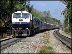 Offlink : UBL WDP4 with SMET ICE !!! (sany20005) Tags: bangalore trains railways indianrailways shimoga trainphoto wdp4 kjmwdp4 gt46pac ublwdp4 wdp420006