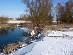 """"""" Oude Waal """" (techneut77) Tags: wintertime ijsschotsen rivierarm sneeuwsporen"""