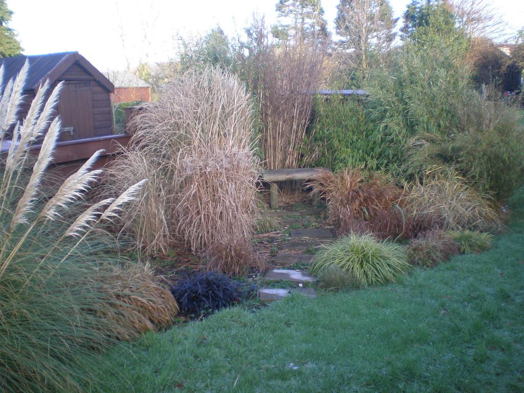 Gräsergarten Bilder the s best photos of gräsergarten flickr hive mind