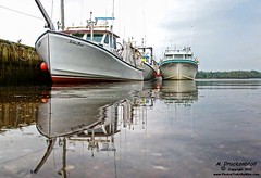 Murray Harbour fishing boats, Prince Edward Island Canada (PhotosToArtByMike) Tags: canada boats scenic lobster princeedwardisland fishingboats pei waterreflection boatdock murrayharbour landscapephotograph