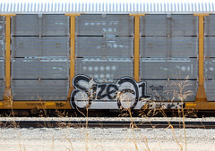Size21 (The Braindead) Tags: auto color art beautiful minnesota train bench dead photography graffiti high amazing cool nice interesting flickr ar 21 good quality painted awesome tracks free minneapolis twin rail brain size explore most rack beyond neat the braindead cites flickrs benched thebraindead