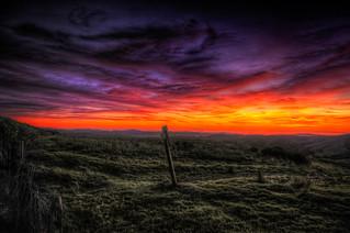 ...and marmalade skies | woodside, ca