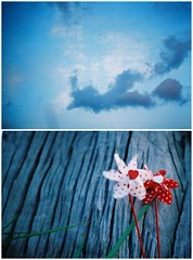#wordlesswednesday (sexyinred) Tags: diptych malaysia analogue wordlesswednesday vivitaruws