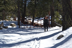 She's about to whoop my ass for making her hike 16 miles in the snow. (theforestprimeval) Tags: san pedro martir