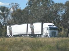 SRV K200 Fat Cab Aerodyne (KW BOY) Tags: road new b tractor truck prime big model highway cab transport over australian melbourne stretch double semi lorry rig hauling express trailer hume freight coe mover trucking kw 2012 srv kenworth haulage aerodyne k200