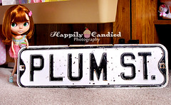 Welcome to Plum Street