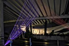 Fancy/Lightweight (chooyutshing) Tags: hongkong singapore 2012 marinabay item19 marinabaysands lightartinstallation urbandevelopmentauthority marinabaywaterfront artsciencemuseum corneliaerdmann ilightmarinabay asialightartfestival fancylightweight colouredledwires