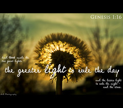 Back-lit Dandelion - Genesis 1:16 (photojourney57 (Thank You for 100,000+ Views!!)) Tags: light sunset sun sunlight home sunshine silhouette evening spring nikon dof god bokeh quote jesus dandelion depthoffield bible backlit frontyard scripture springtime 2012 holybible bibleverse godsword putnamcounty cookevilletn middletennessee genesis116 d5000 nearbynature lesserlight jlrphotography greaterlight photographyforgod nikond5000 godsholyword