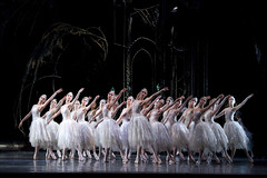 The Swan Lake mystery: An amalgam of different fairytales
