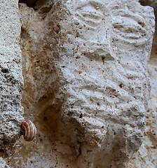 CORTS (beagle34) Tags: girona catalunya pla 81 lestany corts esglesiadesantjuli romnicgticsxii1102