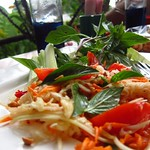 "Papaya Salad <a style=""margin-left:10px; font-size:0.8em;"" href=""http://www.flickr.com/photos/14315427@N00/7066998813/"" target=""_blank"">@flickr</a>"