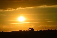 The sun setting over Aldbrough. (6m views. Please follow my work.) Tags: sunset summer sun sex google nikon flickr hull flickrcom eastyorkshire googleimages aldbrough hu11 aldbroughleisurepark thesunsettingoveraldbrough mamfphotography
