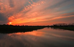 When the sky turns orange (M a u r i c e) Tags: trees sunset sky orange sunlight nature water netherlands reflections pond horizon wideangle efs1022mm ultrawidezoom