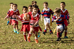 20160514_8790_7D2-200 Rippa Rugby (135/366) (johnstewartnz) Tags: sport canon children eos rugby ethan 70200 hornby 70200mm wonderfulworld yabbadabbadoo 7d2 onephotoaday project366 ripparugby 7dmarkii canonapsc hornbrrfc hornbyvsydenham