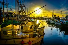 Sunset over Fisherman's Wharf Marina - San Francisco CA (mbell1975) Tags: sf sanfrancisco california ca sunset usa sun sunlight america marina docks boats boat us dock san francisco unitedstates yacht over calif cal american wharf fishermans yachts fishermens sunet