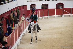 _DSC0408-2 (chris30300) Tags: france les cartagena corrida toro palavas rejon palavaslesflots flots languedocroussillonmidipyrnes languedocroussillonmidipyrn