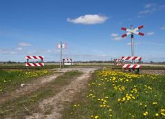 Onbewaakte spoorwegovergang (Jeroen Hillenga) Tags: netherlands nederland groningen levelcrossing railwaycrossing paardebloemen spoorwegovergang gradecrossing gerichtsweg wirdum onbewaaktespoorwegovergang