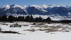 Font-Romeu (Pyrnes, France) (bobroy20) Tags: nature hiver neige pyrnes fontromeu pyrnesorientales