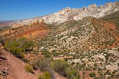 The Beautiful Area Near Cub Creek (jpmckenna - Denali Bound) Tags: utah petroglyph dinosaurnationalmonument rockart getoutside utahhiking fremontculture vernalclassicstyle