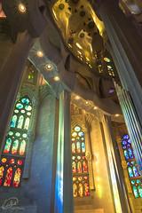Inside Sagrada Familia i (manphibian) Tags: barcelona blue light red colour green church glass yellow familia architecture spain cathedral god interior basilica sony jesus stained sagradafamilia sagrada catalan 247028 gmaster sonya7