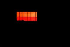 Negative Orange ... (Jos Pestana) Tags: southamerica america venezuela sony amerika chuao fotografa suramerica airelibre sudamrica suramrica amricadelsur aragua americadelsur venecuela  venetsueela americaamrica   amrika venezyela sonynex  sonynex6  jospestana    venezwela venetiola
