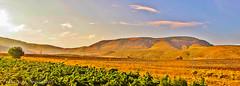 The Hill (Francesco Impellizzeri) Tags: landscape sicily sicilia trapani