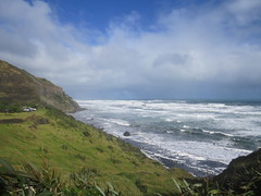 Muriwai Beach ~ May 2016 (SKR_Photography) Tags: newzealand west green beach birds grey waves wildlife gray stormy surfing cliffs auckland rainy westcoast dull downunder flax muriwai muriwaibeach landofthelongwhitecloud auckalnd