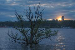 Grande mare 2 (Patrice StG) Tags: river spring qubec stlawrence stlaurent printemps hdr fleuve stlawrenceriver tonemapping d700 mantiuk06 luminancehdr 24120mmf4gvr nikkor24120vrf4