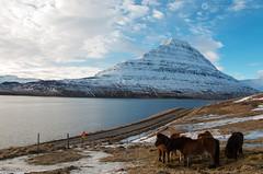 11.Land of Ice ( / ELIX) Tags: volunteering 2016    elixconservationvolunteersgreece